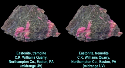 Eastonite w/tremolite, C.K. Williams Quarry,Northampton County, Easton, PA, midrange UV